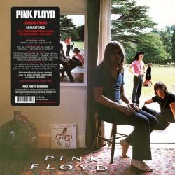 Pink Floyd - Ummagumma...