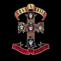 Guns N Roses - Appetite For...