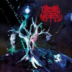 Cardinal Wyrm - Black Hole...